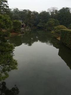 IMG_9361_katsura