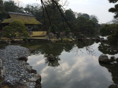 IMG_9375_katsura